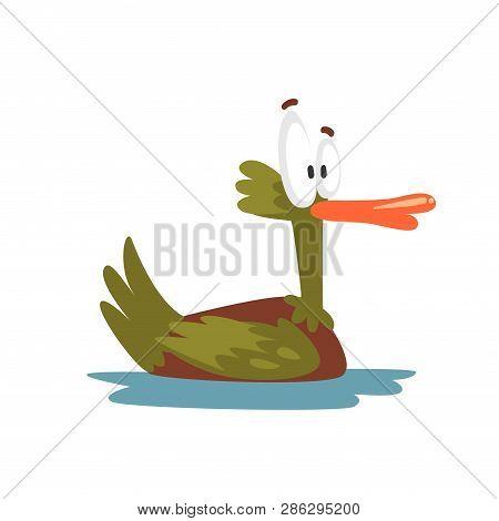 Crazy Male Mallard Duck Swimming, Funny Bird Cartoon Character Vector Illustration