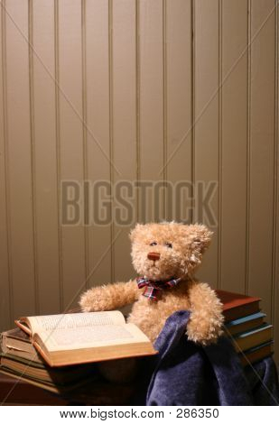 Reading Bear Background