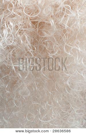 blond hair closeup