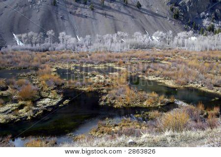 Trail Creek Beaver Ponds Near Sun Valley, Idaho