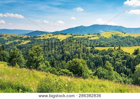 Mountainous Countryside On A Hot Summer Afternoon. Trees On Grassy Slope. Meadows On The Distant Rol