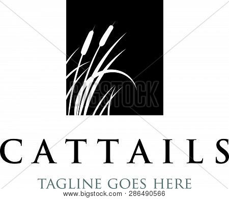 Cattails Trees Logo Inspirations In Black And White Colors