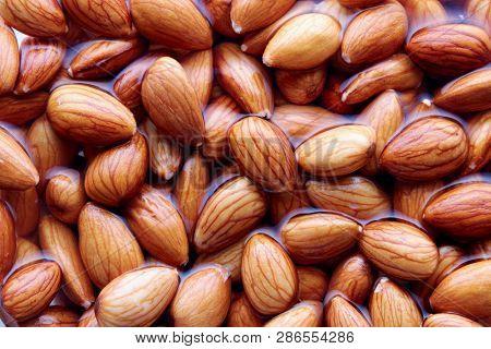 Soaking almonds in water. Almonds being softened in water to create almond milk.