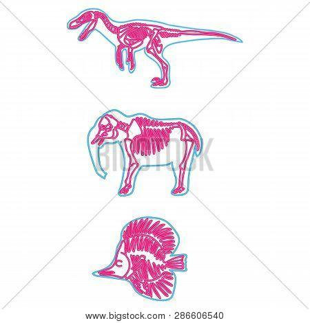 Velociraptor, Elephant, Fish Vector Neon Skeleton Illustration. Fossil Cartoon Motif Set.