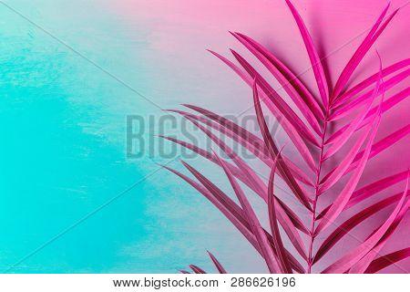 Big Fresh Palm Leaf On Duotone Purple Violet Blue Background. Trendy Neon Colors. Toned. Minimalist