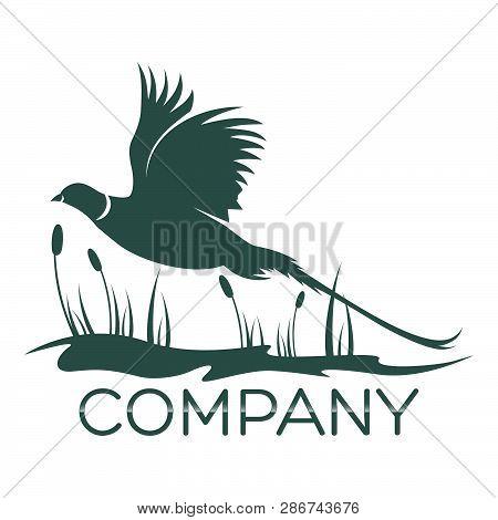 Modern Pheasant Logo As An Example. Vector Illustration.