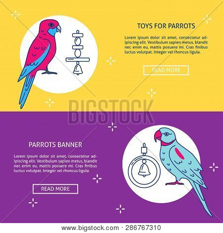 Pet Shop Flyer Vector Photo Free Trial Bigstock
