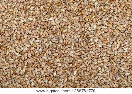 Background Golden Flax Seeds. Micronutrient Beneficial For The Organism That Prevents And Cures Ailm