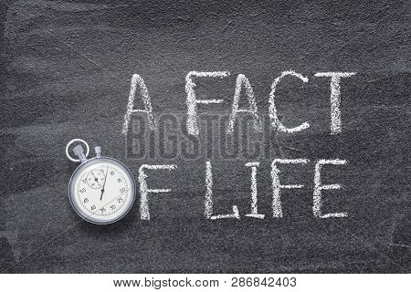 A Fact Of Life Phrase Handwritten On Chalkboard With Vintage Precise Stopwatch Used Instead Of O