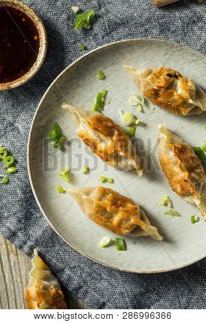 Homemade Korean Mandu Pork Dumplings