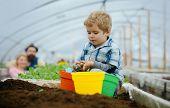 kid in greenhouse. happy kid work in greenhouse. greenhouse kid business. kid in greenhouse with small child gardener. he loves his job poster