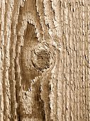 A wood knot and texture close up. poster