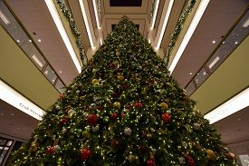 Looking Up At The Giant Christmas Tree Inside Of The 900 North Michigan Shops, Shopping Mall, Chicag