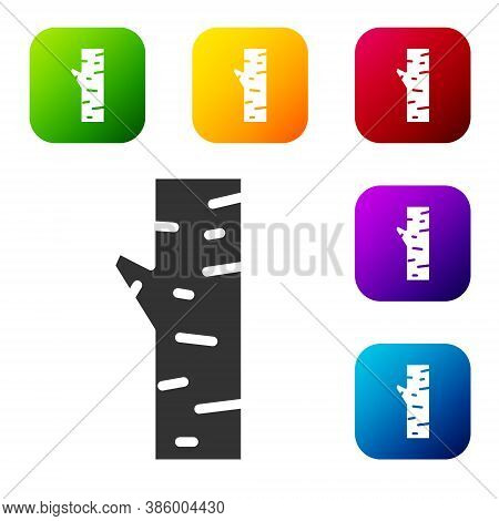Black Birch Tree Icon Isolated On White Background. Set Icons In Color Square Buttons. Vector