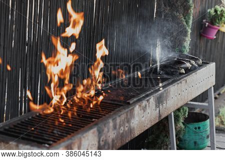 Long Rectangular Barbecue With Fire On The Street, Eggplants Are Fried On Day Outdoor. Summer Barbec