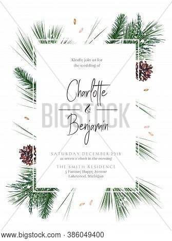 Emerald Christmas Greenery, Spruce, Fir, Pine Cones Seasonal Vector Design Frame. Woodland Simple St