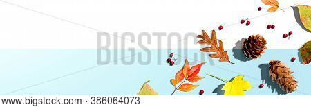 Colorful Autumn Leaves With Pinecones Overhead View - Flat Lay