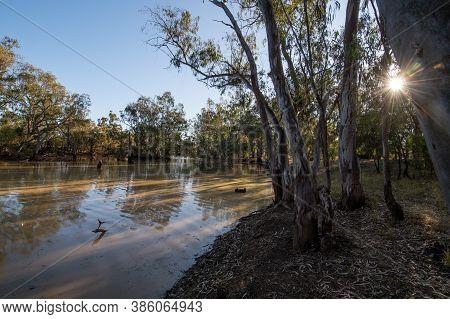 Moonie River At Nindie Gully Qld Australia