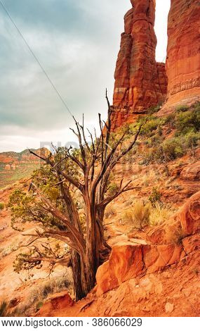 Cathedral Rock in Sedona, Arizona,USA