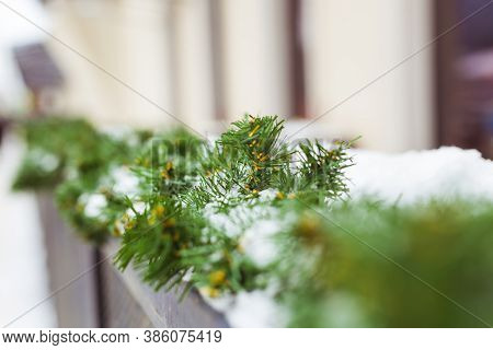 Christmas Decor Railing Branches Of A Blue Christmas Tree. Decoration Outside The House To Create A