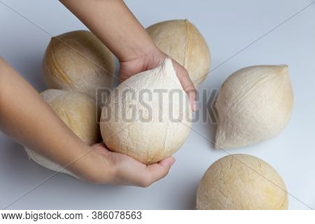 Coconut Isolated On White Background.fresh Coconut.