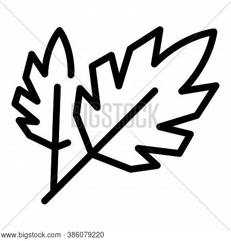 Parsley Eco Icon. Outline Parsley Eco Vector Icon For Web Design Isolated On White Background