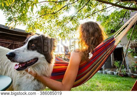 woman with dog relaxing in hammock in back yard