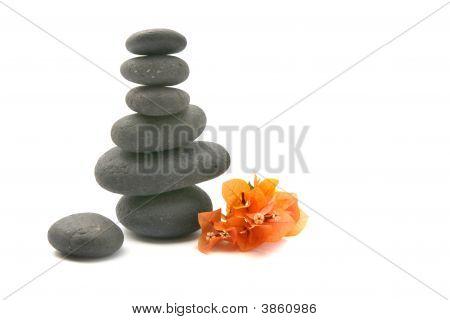 Zen Stones With Bouganvilla Flowers Isolated.
