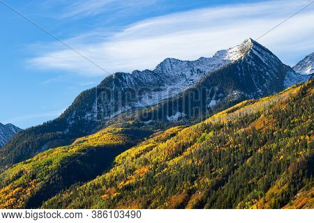 Mcclure Pass. Golden Leaves Of Aspen Trees In The Beautiful Rocky Mountains Of Colorado.