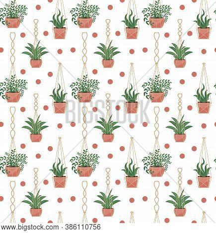 Potted Flowers Macrame Pots Seamless Pattern, Modern Scandinavian Style, Hanging Plants Endless Text