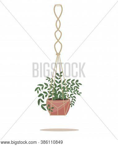 Flower In A Pot Pots Macrame, Modern Scandinavian Style. Hanging Plant, Interior Decor. Vector Illus