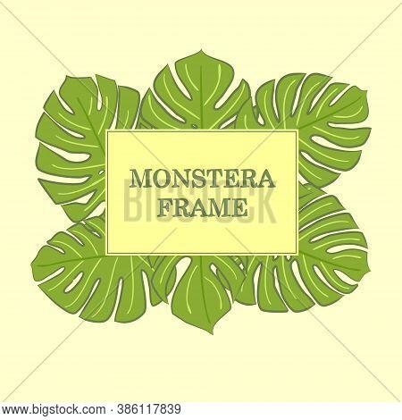 Monstera Frame. Monstera Vector. Hand Drawn Frame. Monstera Leaves. Jungle Frame. Summer. Jungle