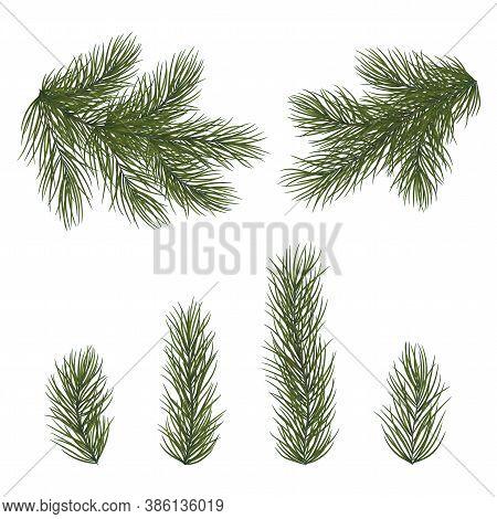 Nativity, Yule, Abstract, Background, Branch, Bunch, Celebrate, Celebration, Christmas, December, De