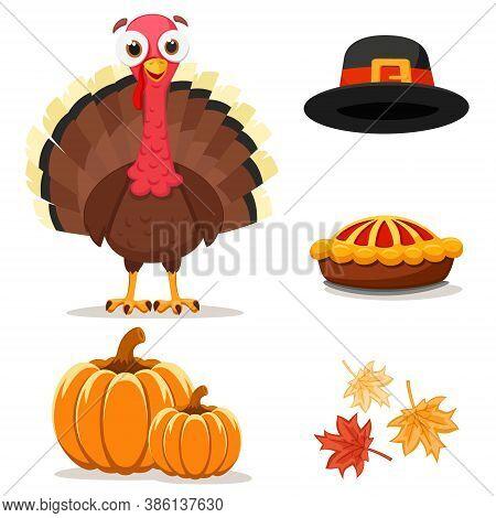 Bird Turkey Set With Hat, Pie And Pumpkins
