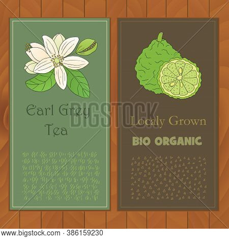 Organic Tea Collection. Vector Flyers With Hand Drawn Illustration Of Citrus Bergamia On A Wooden Ba