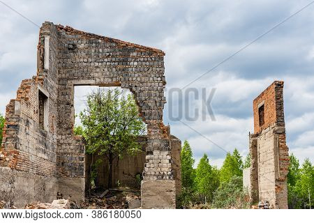 The Ruins Of The Houses. Brick Walls. Thickets On The Ruins.