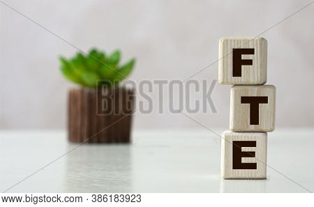 Fte (full-time Equivalent) Acronym On Wooden Cubes On A Light Background With A Cactus