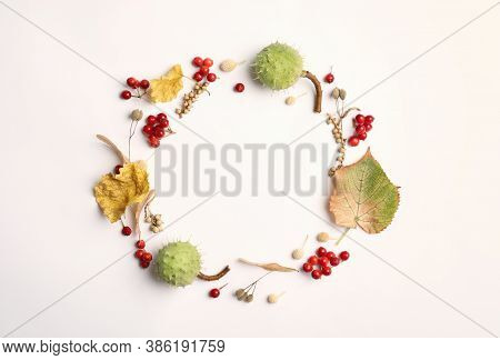 Dried Leaves, Seeds And Berries Arranged In Shape Of Wreath On White Background, Flat Lay With Space