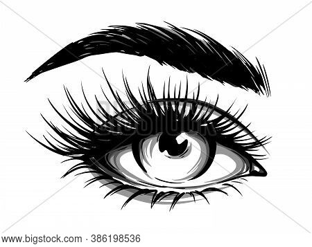 Hand-drawn Woman's Eye With Eyebrow And Long Eyelashes. Fashion Illustration. Vector Eps 10.