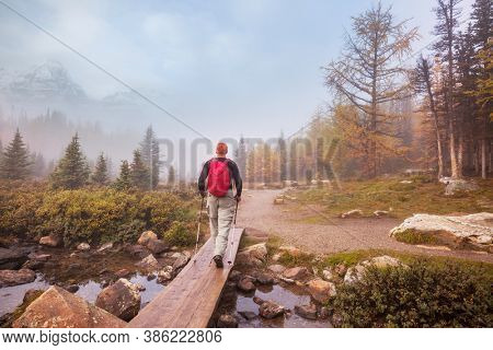 Hike in Canada. Beautiful autumn season in Canadian mountains. Fall background.