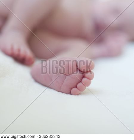 Newborn Baby Foot Detail. Baby Care. Cute Foot Of A Newborn Toddler Baby.