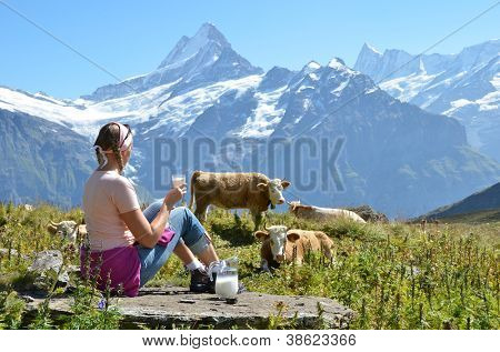 Girl with a jug of milc against herd of cows. Switzerland poster
