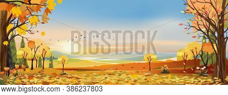 Autumn Landscapes Of Countryside With Sunset And Blue And Pink Sky,panoramic Of Mid Autumn With Farm