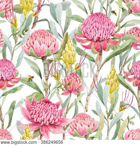 Beautiful Vector Seamless Floral Pattern With Watercolor Summer Protea Flowers. Stock Illustration.