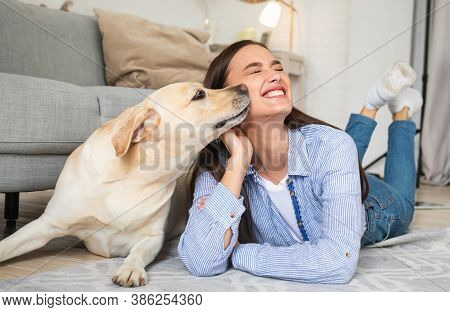 Best Friend Concept. Portrait Of Golden Retriever Sniffing Womans Face And Cheek. Affection And Love