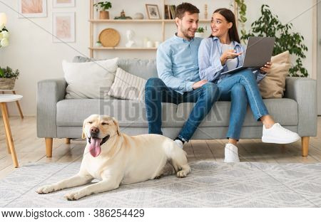 Spending Time At Home. Portrait Of Man And Woman Using Laptop Sitting On Couch, Happy Pet Lying On T