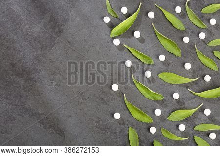 Pills And Leaves Of Stevia Plant - Stevia Rebaudiana.