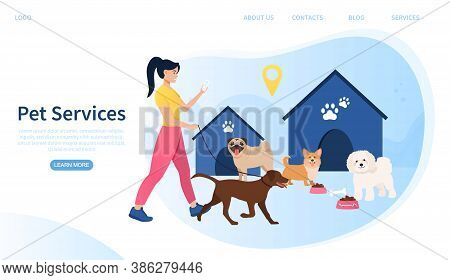 Web Page Template For Web Services Showing A Young Woman Walking A Dog And Feeding Other Dogs In The