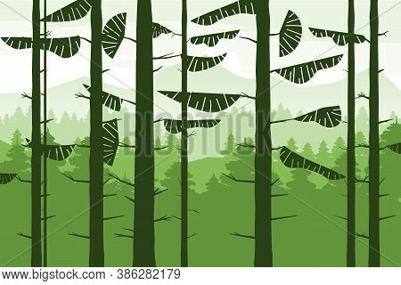 Forest Coniferous Trunks Of Fir Trees Silhoutte, Summer Wood Hills. Vector Illustration Isolated