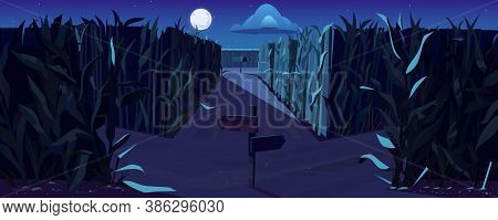 Road On Cornfield With Fork And Direction Signs At Night. Concept Of Choosing Way And Making Decisio